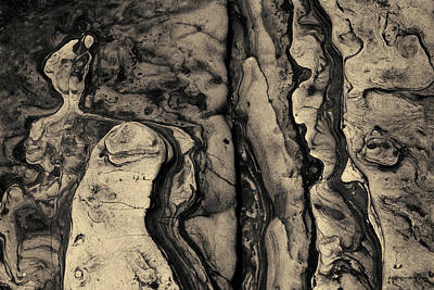Photograph - Point Lobos II Toned by David Gordon