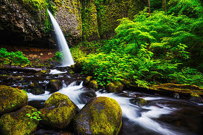 Photograph - Ponytail Falls In Columbia River Gorge In Oregon by Vishwanath Bhat