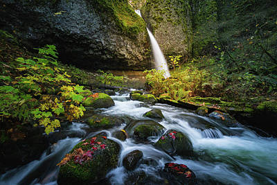 Photograph - Ponytail Falls With Autumn Foliage by William Lee