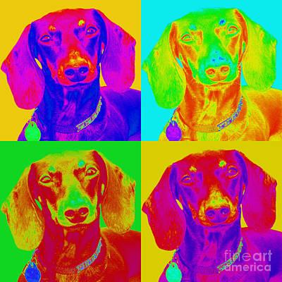 Dachshunds Doxie Digital Art - Pop Art Dachshund by Renae Laughner