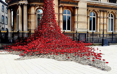 Photograph - Poppies - City Of Culture 2017, Hull by Sarah Couzens