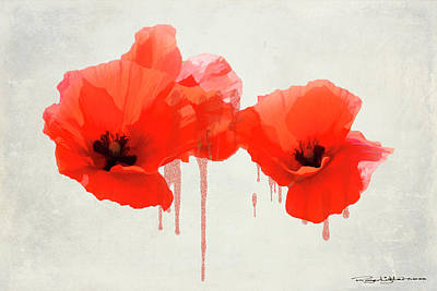Digital Art - Poppies by Roger Lighterness