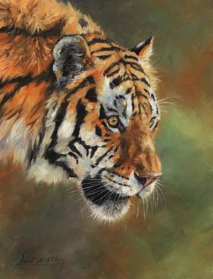 Painting - Portrait Of An Amur Tiger by David Stribbling
