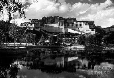 Photograph - Potala Palace Reflection by Craig Lovell