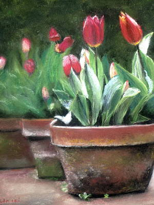 Painting - Potted Tulips by Cindy Plutnicki