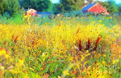 Photograph - Prairie Farm House by Gina Signore