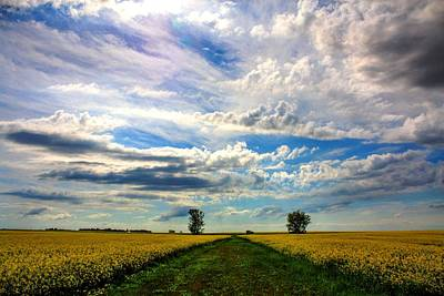 Photograph - Prairie Sky by David Matthews