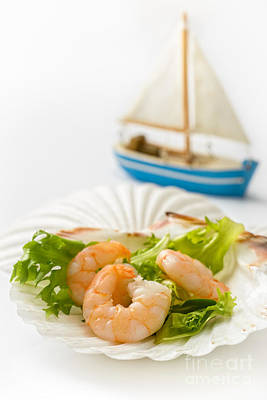 Fresh Shrimp Wall Art - Photograph - Prawn Salad by Amanda Elwell