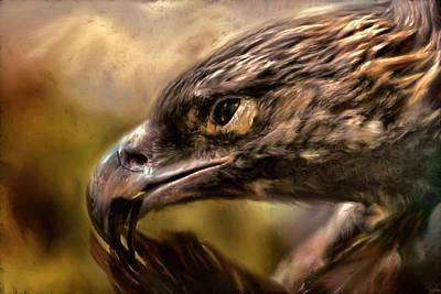 Golden Eagle Painting - Preening by Jai Johnson