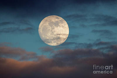Photograph - Prelude To The Supermoon by Mimi Ditchie