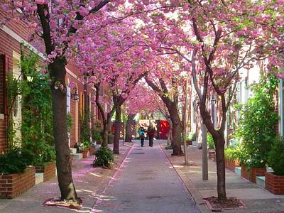 Photograph - Prettiest Street In Philadelphia by Andrew Dinh