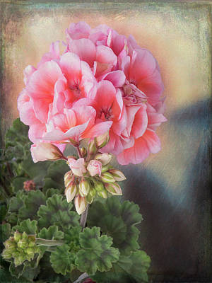 Photograph - Pretty In Pink by Leslie Montgomery
