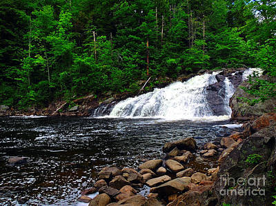 Photograph - Profile Falls, Nh by Mim White