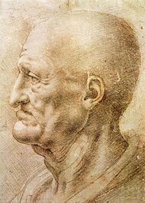 Closeup Drawing - Profile Of An Old Man by Leonardo da Vinci