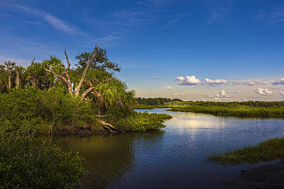 Sandy Cove Photograph - Protected Wetland by Marvin Spates