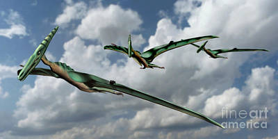 Flying Dinosaur Photograph - Pterodactyls In Flight by Spencer Sutton