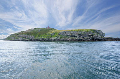 Photograph - Puffin Island by Steev Stamford