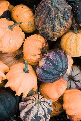 Redoute Pyrography - Pumpkins by Artistic Panda