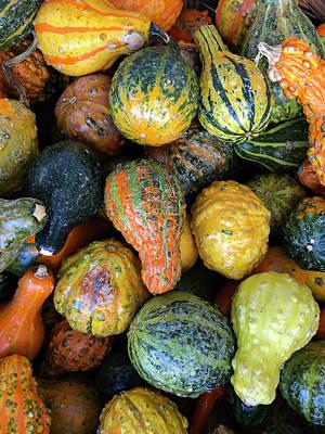 Photograph - Pumpkins by Dorin Adrian Berbier