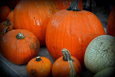 Cantaloupe Photograph - Pumpkins  by Linda Covino