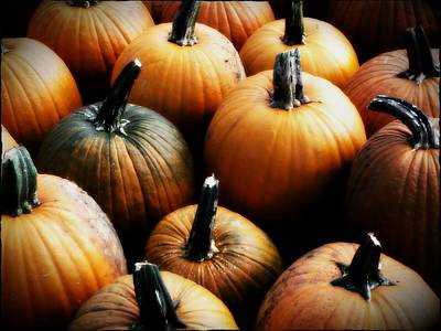 Photograph - Pumpkins by Michael L Kimble