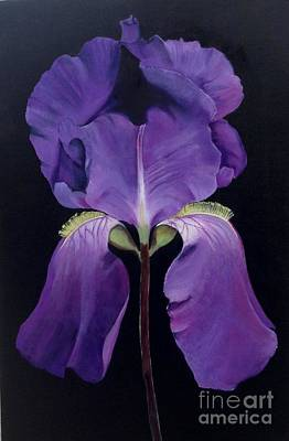 Painting - Purple Beauty by Elaine Callahan