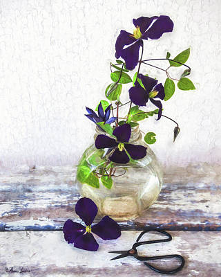 Photograph - Purple Clematis by Anna Louise