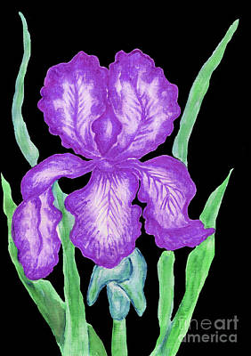 Painting - Purple Iris, Painting by Irina Afonskaya