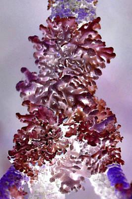 Seaweed Painting - Purple Seaweed by Edouard Coleman