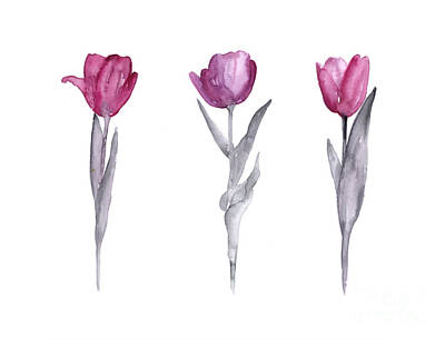 Watercolor Flower Painting - Purple Tulips Watercolor Painting by Joanna Szmerdt