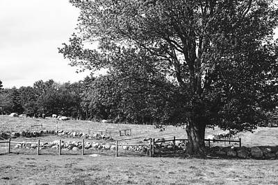 Photograph - Quaint New England Farm Scene by Library Of Congress