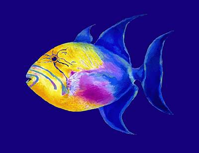 Painting - Queen Triggerfish by Stephen Anderson