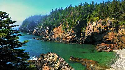 Photograph - Quoddy Head by Lisa Dunn