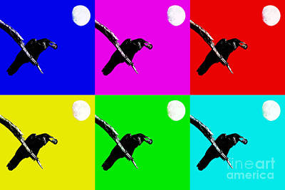 Quoth The Raven Nevermore Six Print by Wingsdomain Art and Photography