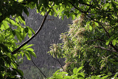 Rain Art Print by Bruno Spagnolo