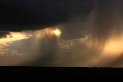 Photograph - Rain  by David Matthews