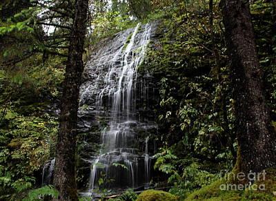 Photograph - Rain Forest Water Fall by Lennie Malvone