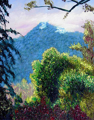 Rain Forrest Mountain Art Print by Stan Hamilton