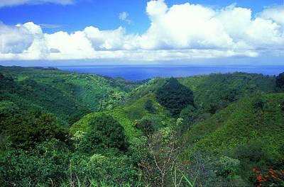 Photograph - Rainforest Near Hana by John Burk