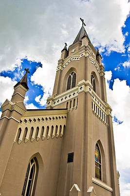South Louisiana Photograph - Reaching For The Heavens by Scott Pellegrin