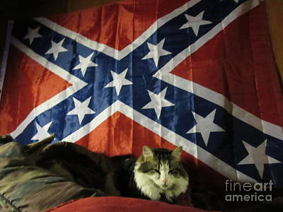 Rebel Cat Art Print by Frederick Holiday