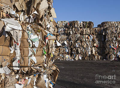 Recycling Facility Art Print