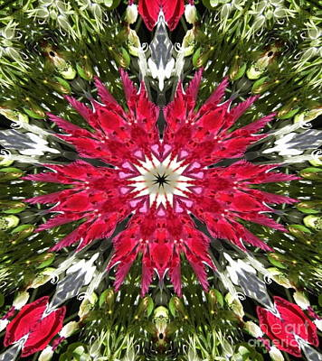 Digital Art - Red And Green Abstract by D Hackett