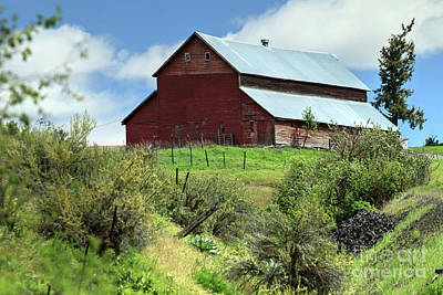Photograph - Red Barn by Rick Mann