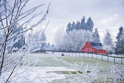 Photograph - Red Barn by Windy Corduroy