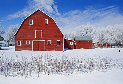 Without People Photograph - Red Barn, Winter, Grande Pointe by Dave Reede
