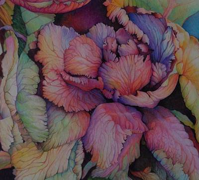 Cabbage Drawing - Red Cabbage by Catherine Robertson