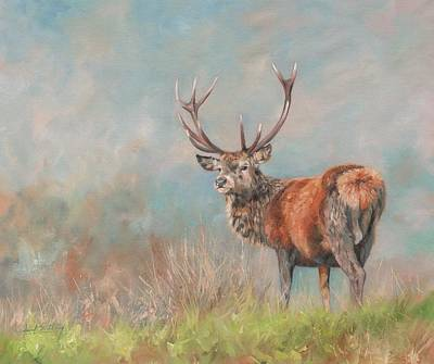 Stag Painting - Red Deer Stag by David Stribbling