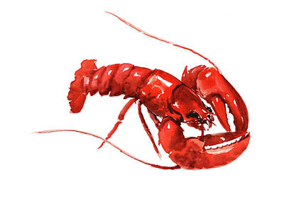 Painting - Red Lobster by Suren Nersisyan