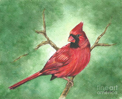 Painting - Red Male Cardinal by Nan Wright